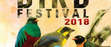 Del 15 al 19 se hará el segundo Risaralda Bird Festival