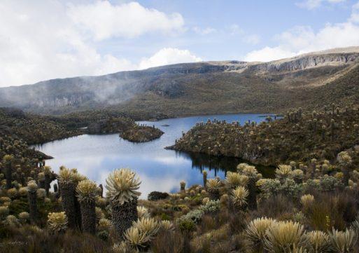 El Parque Los Nevados está listo para Semana Santa
