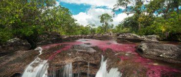 Satena inicia vuelos a Caño Cristales el 1 de junio