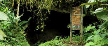 Se reabrió el Parque Cueva de Los Guácharos, después de 6 meses