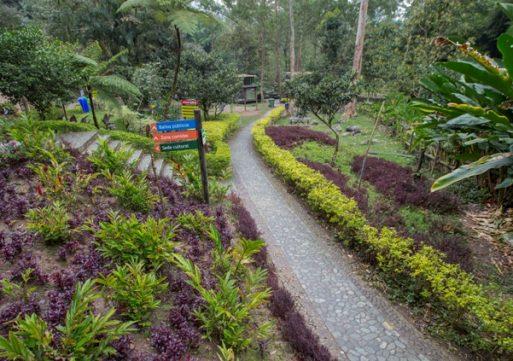 El Parque El Salado recibe 100 mil visitantes al año
